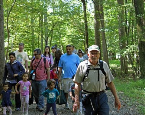 Types of hiking - Day Hiking